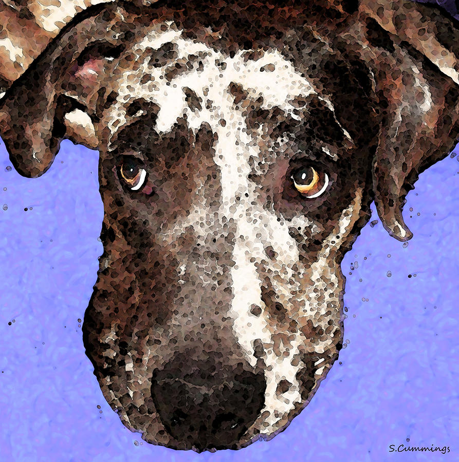 Catahoula Leopard Dog Painting - Catahoula Leopard Dog - Soulful Eyes by Sharon Cummings