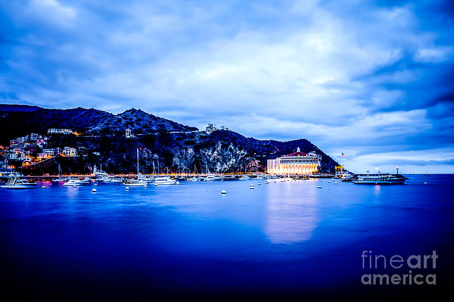 Catalina Island Avalon Bay At Night Picture Photograph