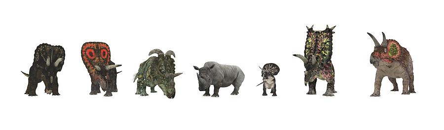 Nedoceratops Photograph - Cerapod Dinosaurs Compared To A Rhino by Walter Myers