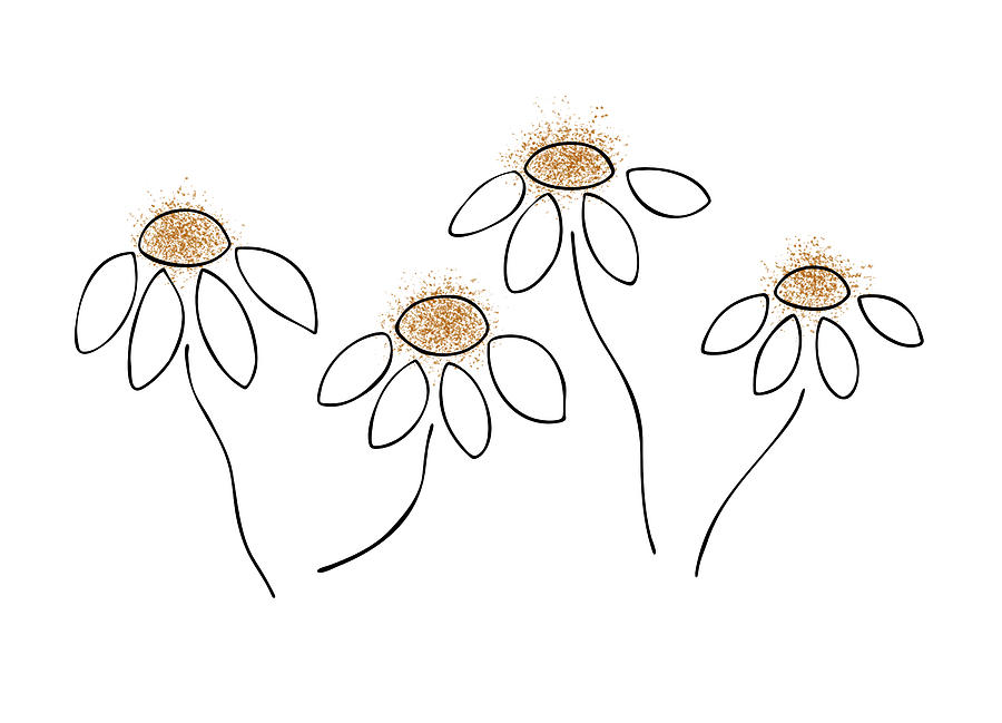 Chamomile Drawing