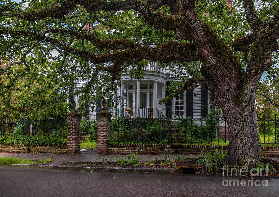 Charleston After The Rain Photograph