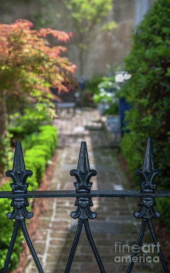 Charleston Courtyard Photograph