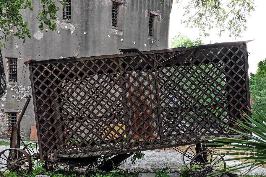 Charleston Horse Paddy Wagon Photograph