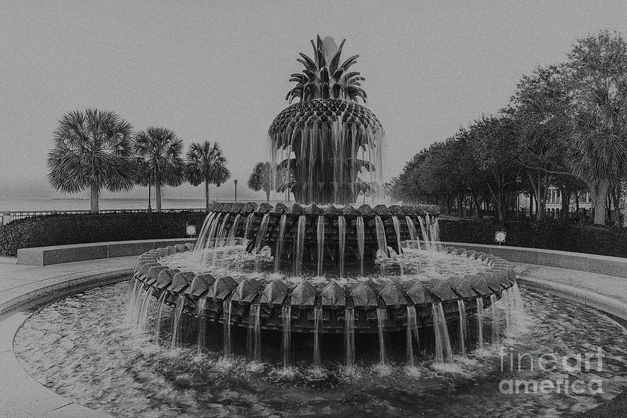 Charleston Pineapple Fountain In Black And White Photograph