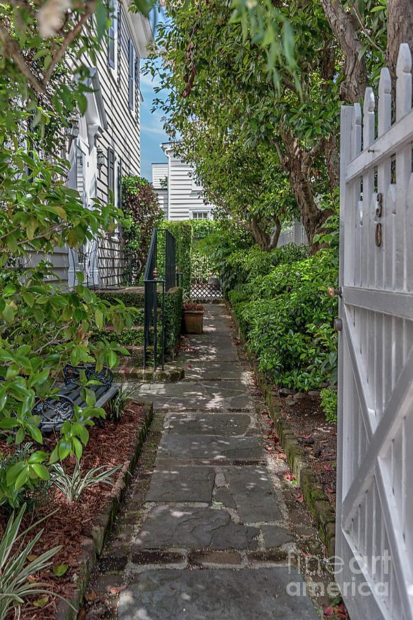 Charleston Side Courtyard Photograph