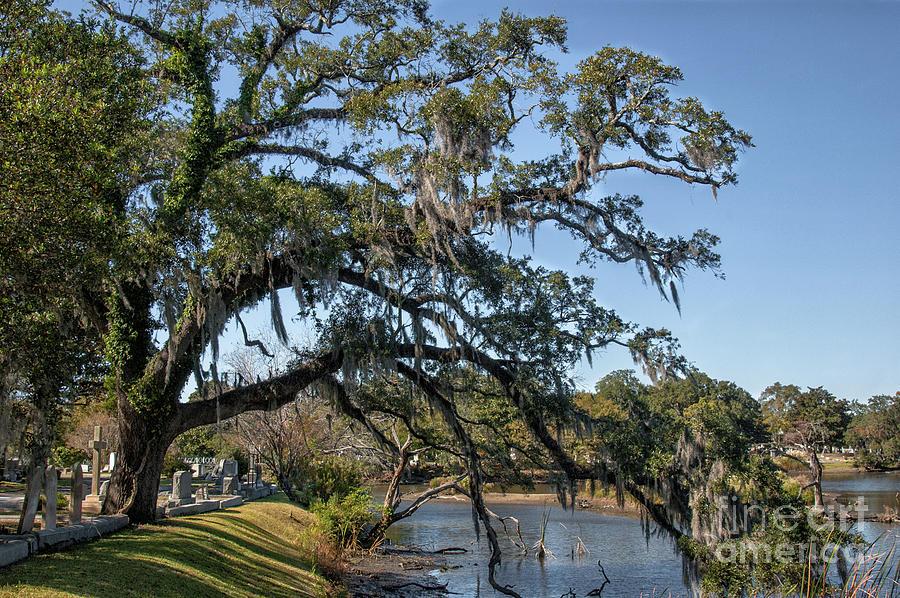 Charleston Treasure Photograph