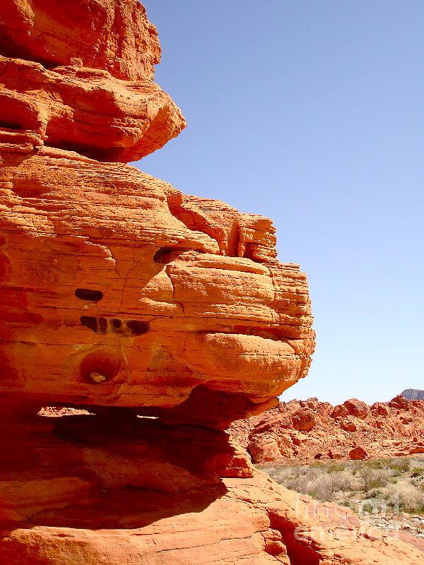 Desert Photograph - Cheese Skyscraper by Silvie Kendall