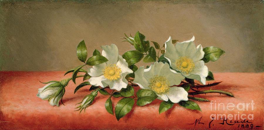 Cherokee Roses Painting - Cherokee Roses by Martin Johnson Heade