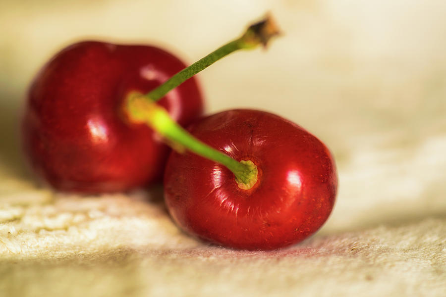 Cherries On White Photograph