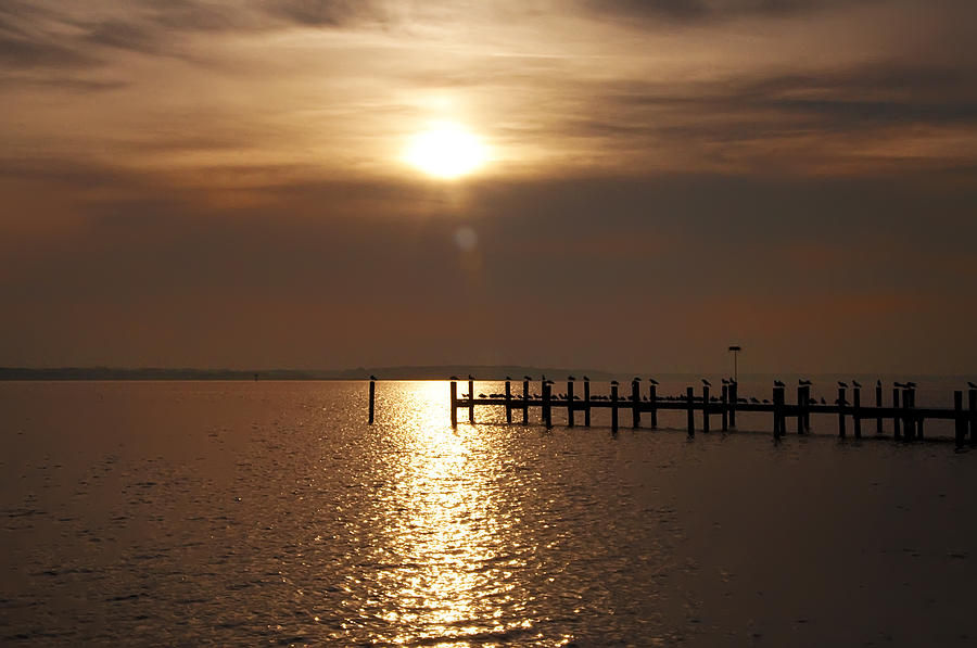 Chesapeake Photograph - Chesapeake Morning by Bill Cannon