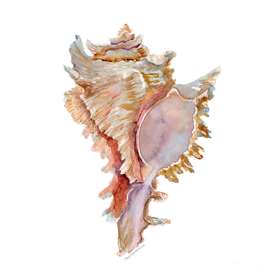 Seashells Body Paint