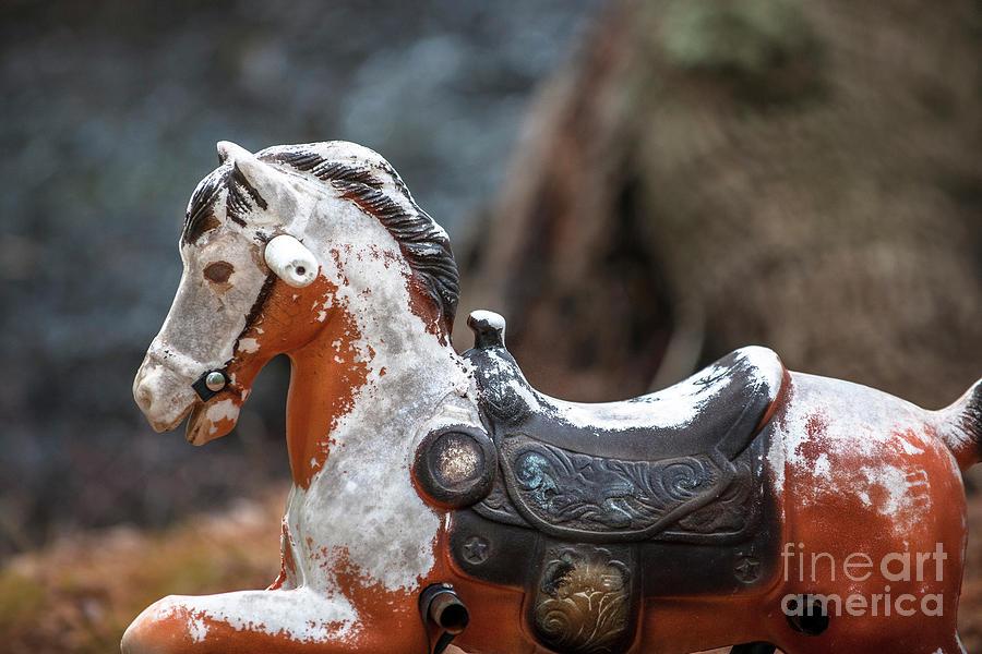 Child Bouncy Horse Photograph