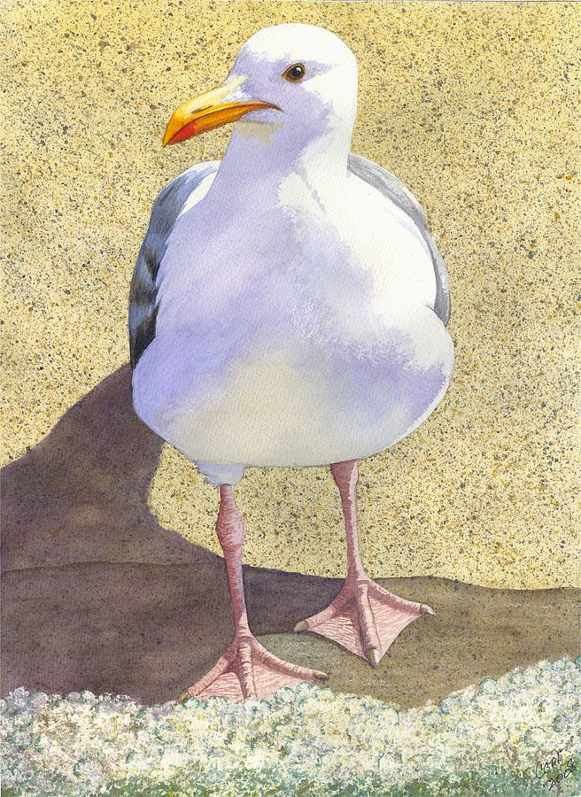 Seagull Painting - Chilly by Catherine G McElroy