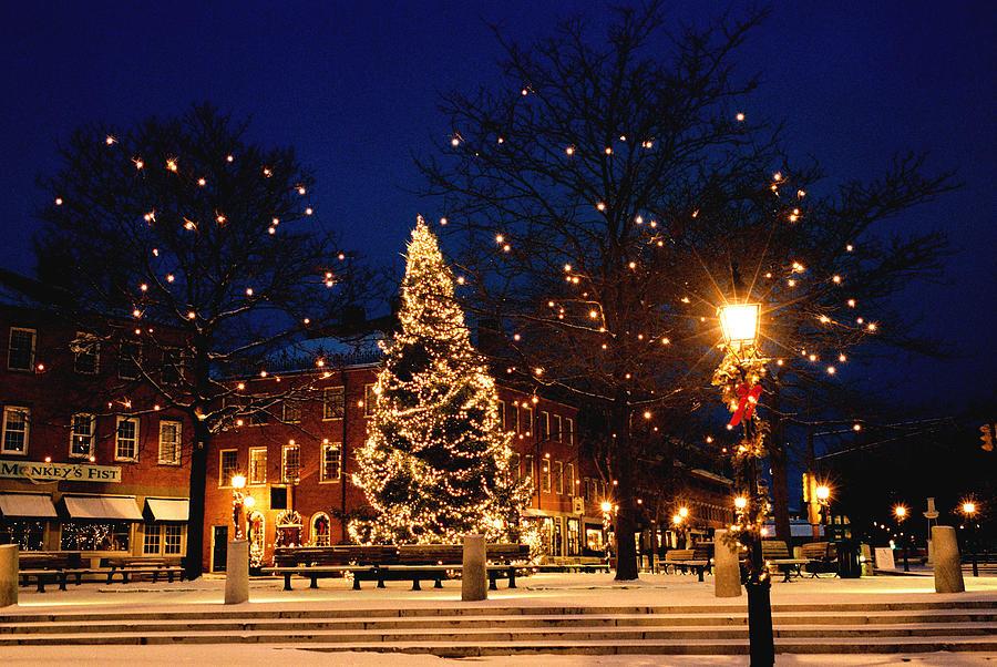 Christmas Tree Uk Online