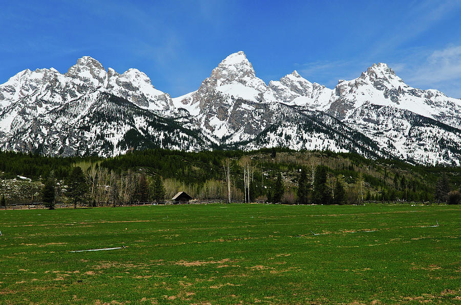 Grand Teton National Park Photograph - Climbers Ranch In Spring by Greg Norrell