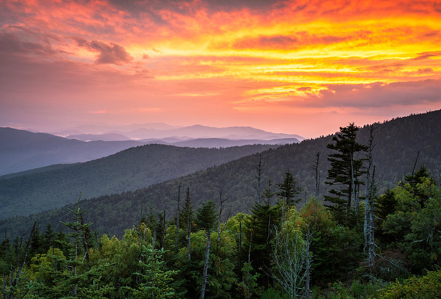 Great Smoky Mountains National Park Photograph - Clingmans Dome Great Smoky Mountains - Purple Mountains Majesty by Dave Allen