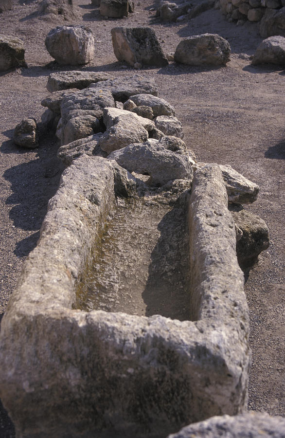 Stone Photograph - Close Up Of Excavations In The Ancient by Richard Nowitz