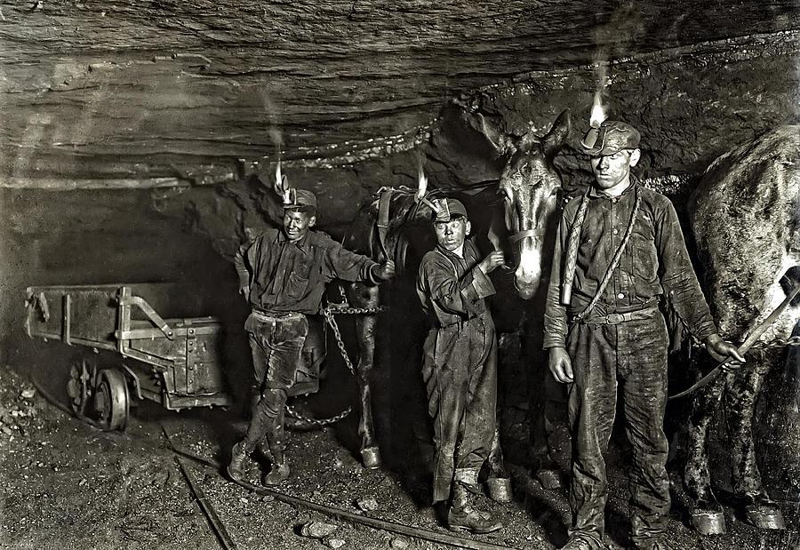 Hine Photograph - Coal Mine Mule Drivers  1908 by Daniel Hagerman
