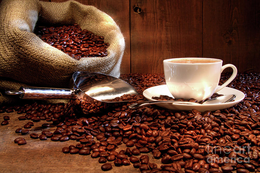 Coffee Cup With Burlap Sack Of Roasted Beans  Photograph