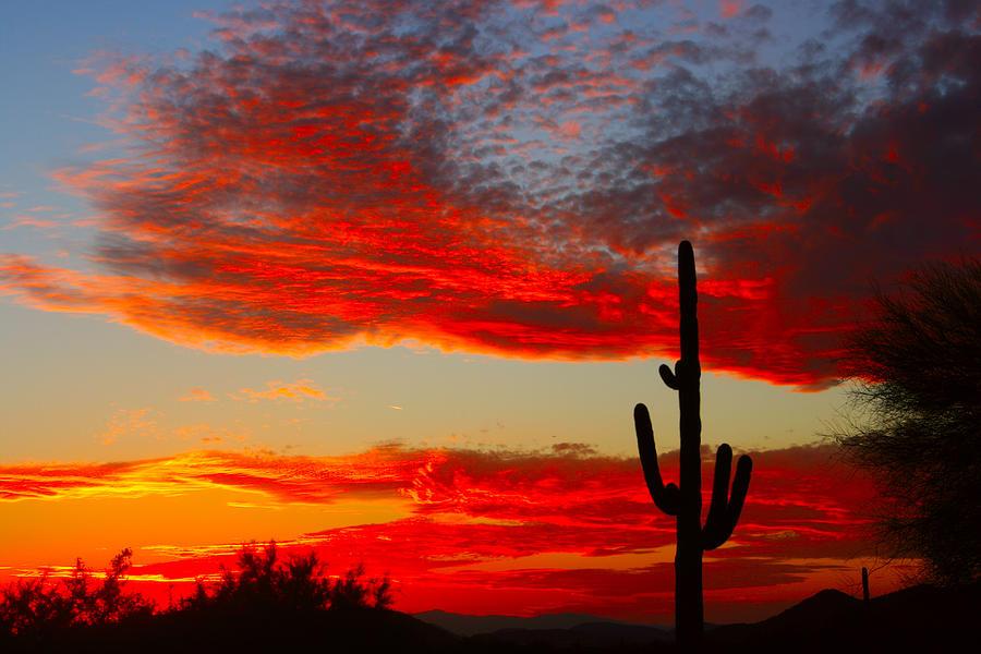 Colorful Arizona Sunset Photograph