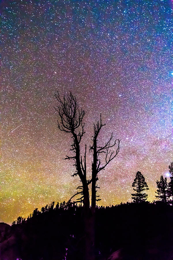 Colorful Celestial Night Portrait Photograph