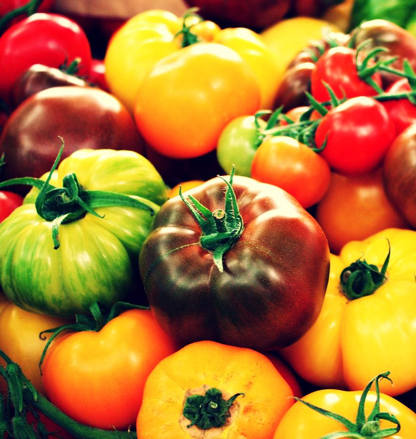 Tomato's Photograph - Colorful Harvest by Cathie Tyler