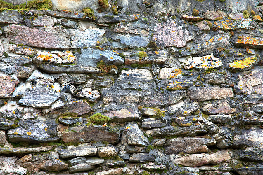 Colorful Rocky Mountain Nature Wall Photograph