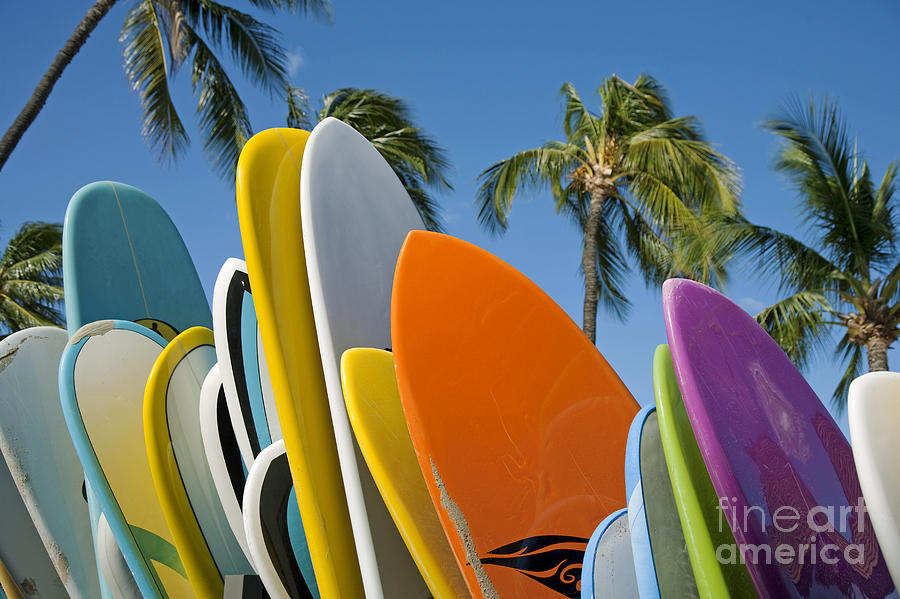 Blue Photograph - Colorful Surfboards by Ron Dahlquist - Printscapes