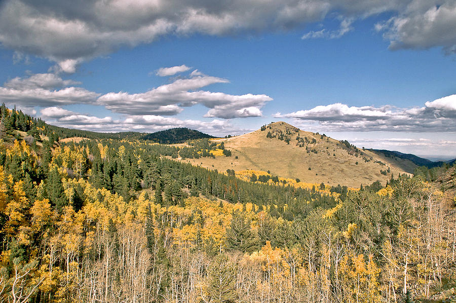 Fallcolors Mountain Hill Hikeing Nature Animals Deer Moose  Sheep Cow Hunting Camping Clouds Sky Rain Storm  Wind Stream Fishing Backpack Trails Top Pinetrees Aspen Summit Fineart Greeing Cards Fall Greeting Cards. Fall Canvas Prints. Fall Framed Prints. Landscape Fall Prints. Landscape Greeting Cards Sky Greeting Cards Mountion Greeting Cards.   Photograph - Colors In Colorado by James Steele