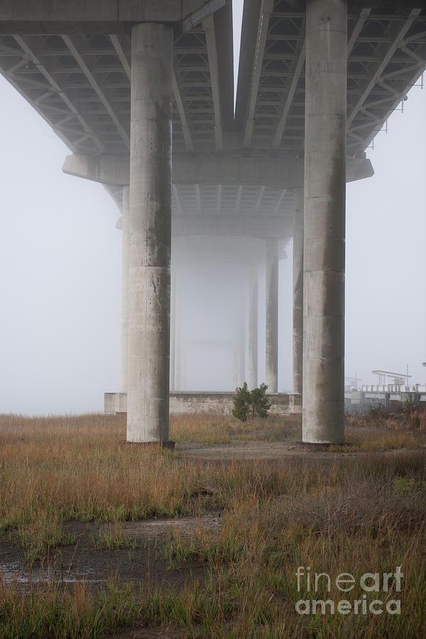 Columns Of Fog Photograph