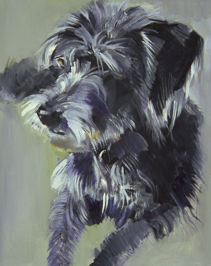 Dog; Animal; Pet; Wire Haired; Shaggy Painting - Connie by Sally Muir