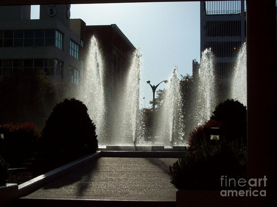 St. Louis Photograph - Cool In St. Louis by Denise Workheiser
