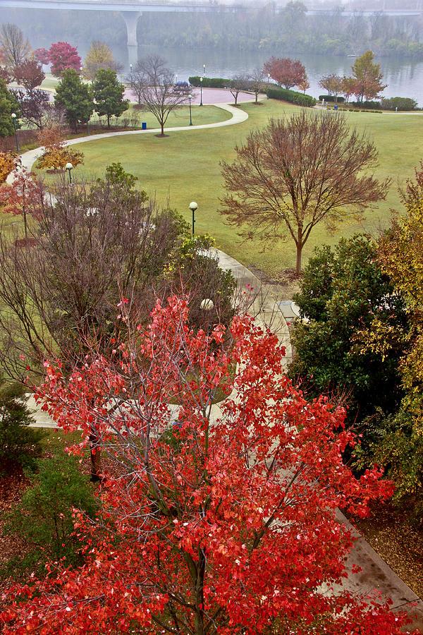 Coolidge Park Path Photograph