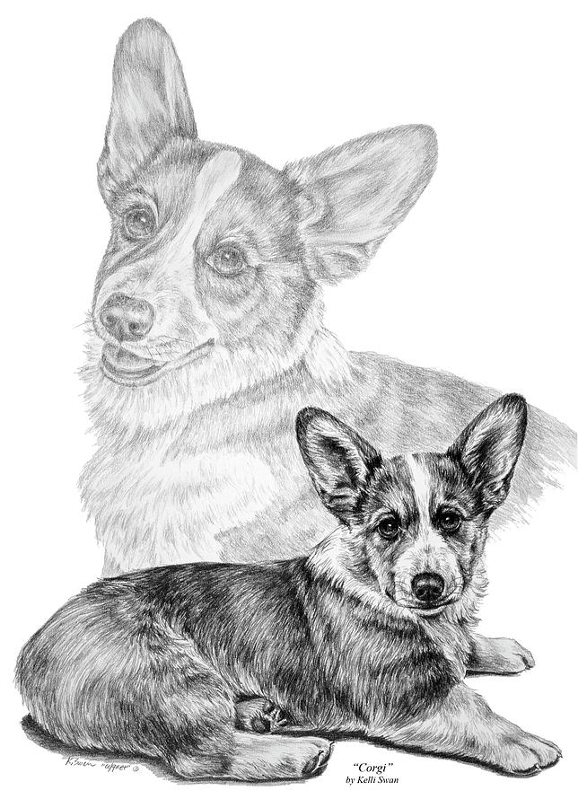 Corgi Dog Art Print Drawing