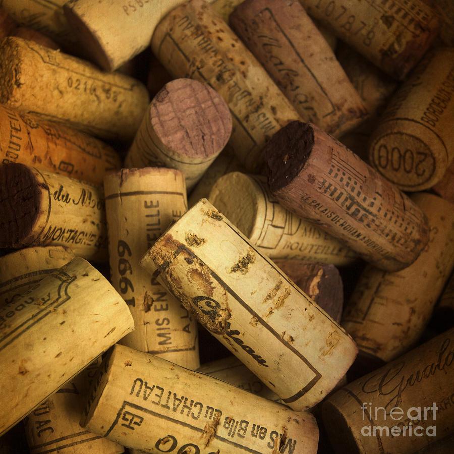 Bouchons Photograph - Corks by Bernard Jaubert