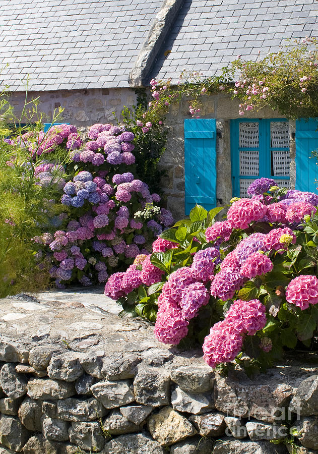 Bretagne Photograph - Country Style by Sophie De Roumanie