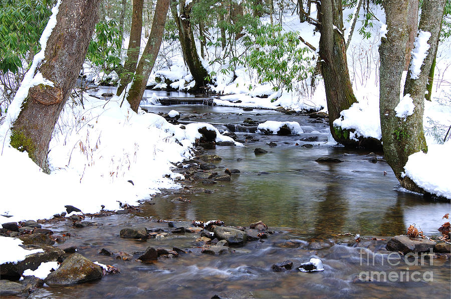 West Virginia Photograph - Craig Run by Thomas R Fletcher