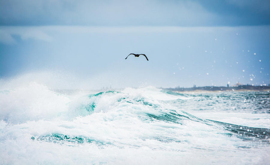 Waves Photograph - Crashing Waves by Parker Cunningham