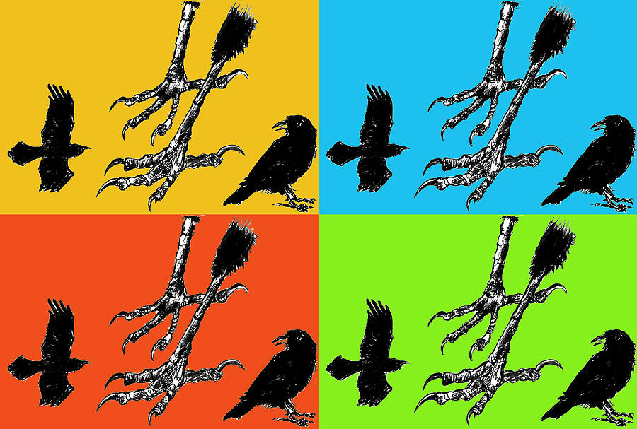 Crows Drawing - Crow Feet Four by Diana Ludwig