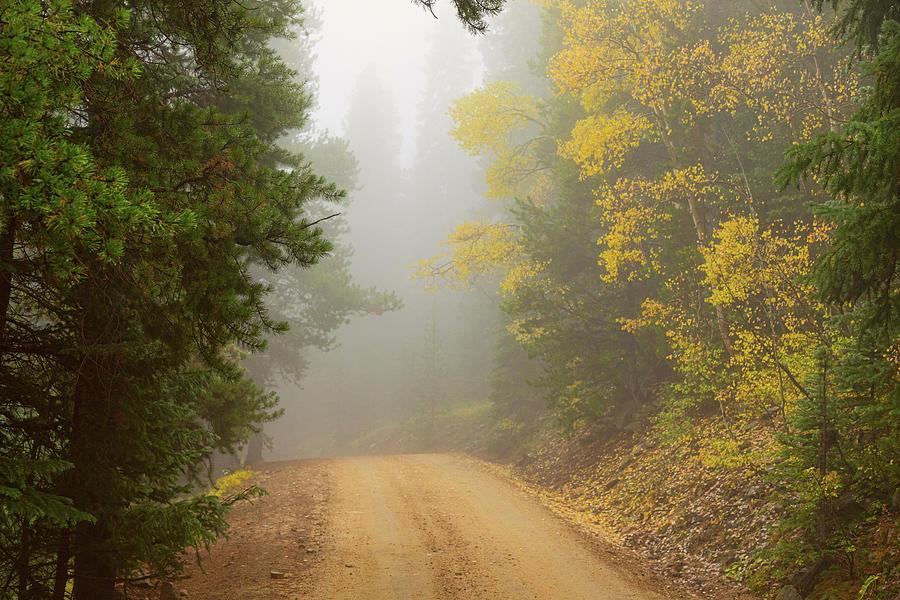Cruising Into Autumn Fog Photograph