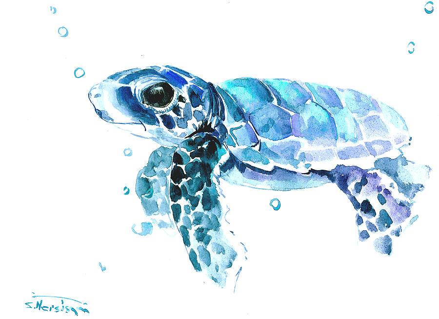 Cute Baby Turtle Painting By Suren Nersisyan