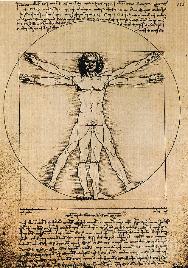 Leonardo Da Vinci Photograph - Da Vinci Rule Of Proportions by Science Source