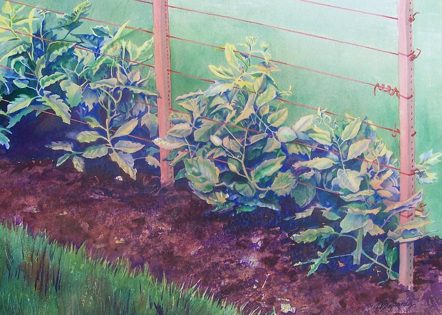 Garden Painting - Daddys Bean Row by Tina Farney