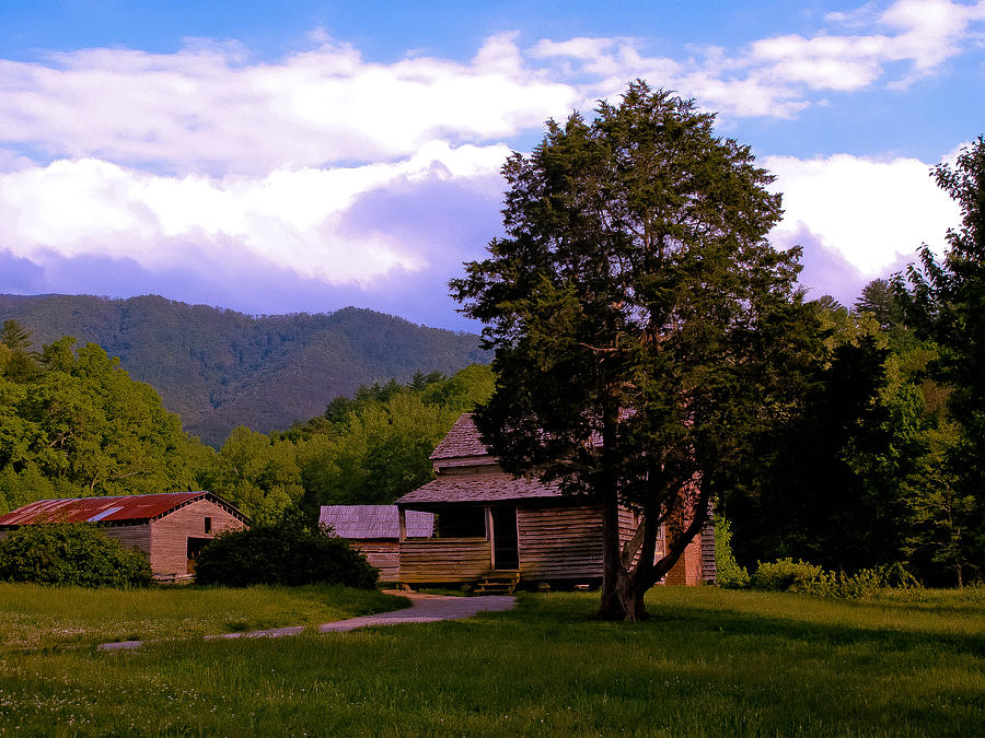 Old Cabin In Mtns. Of Tenn. On A Hill In The Middle Of The Cove Photograph - Dan Lawson Place  by David A Brown