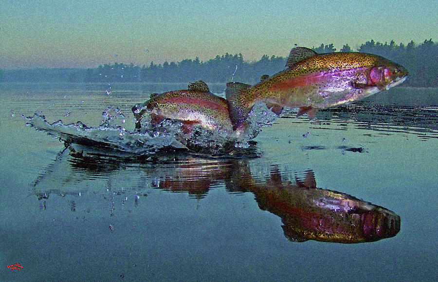 Rainbow Trout Photograph - Dance Of The Trout by Brian Pelkey