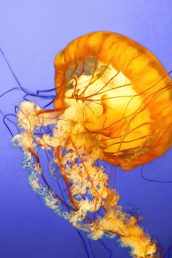 Dancing Jellyfish Photograph