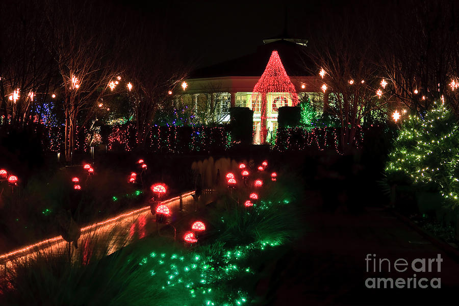 Daniel Stowe Pavilion At Christmas Photograph
