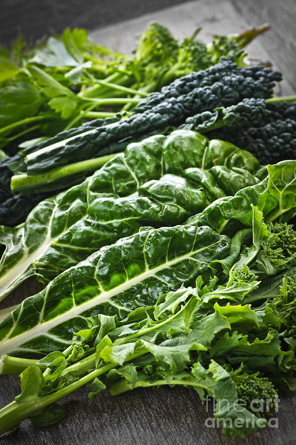 Dark Green Photograph - Dark Green Leafy Vegetables by Elena Elisseeva