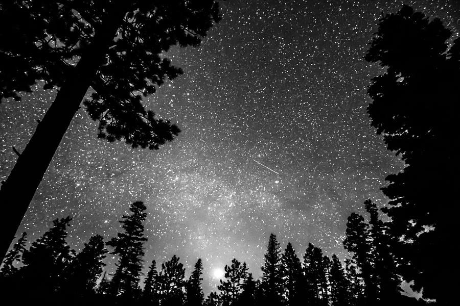 Dark Stellar Universe Photograph