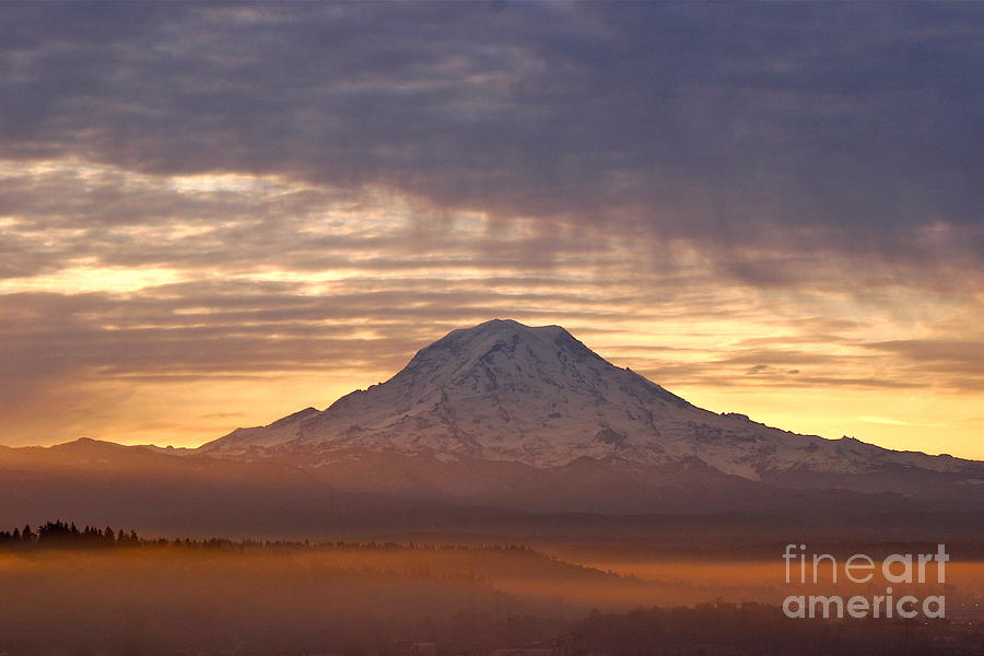 Dawn Mist About Mount Rainier Photograph by Sean Griffin